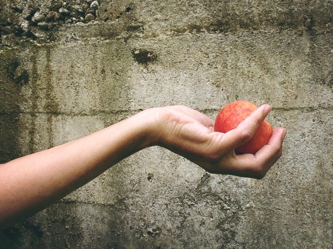 peach-812717_1280