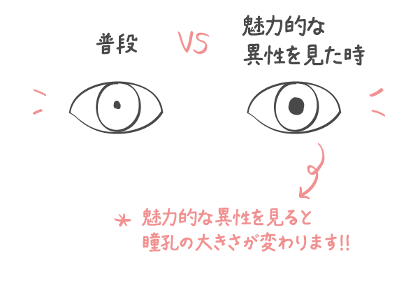 素敵な人を見た時に瞳孔が変化する!