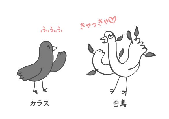 白鳥とカラス